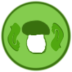 Ручная сортировка грибов